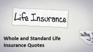 Online Seniors Travel Insurance Quotes