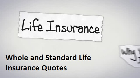 Whole Life Insurance Quotes For Seniors Adorable Seniors Travel Insurance Quotes